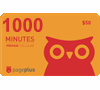 PagePlus Standard 1,000 Minutes Card